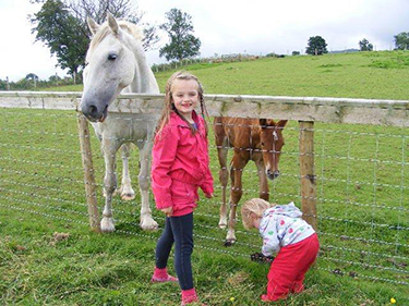 Howbeck Lodge horses farm glamping